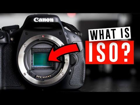 camera-basics:-iso