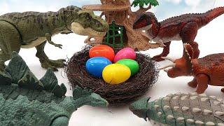 Who's Dinosaur Eggs? Jurassic World Dinosaur Born In Dino Eggs - T-Rex Stegosaurus Triceratops 공룡알