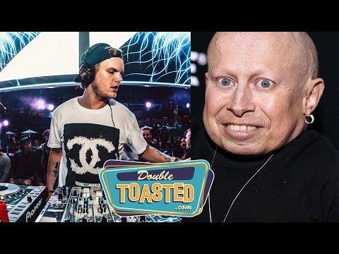 DJ AVICII   VERNE TROYER   GONE TOO SOON