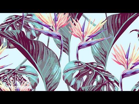 Música Hawaiana Youtube