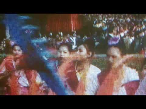 Nagpur's Baredi Folk Dance 26 January 2018 |69 Republic day India
