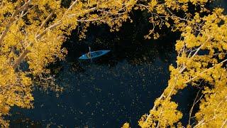 Autumn paddling - Spreewald Lübennau, Germany