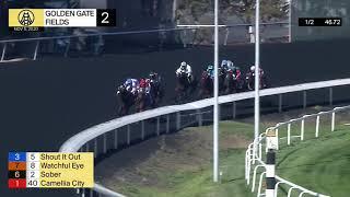 Vidéo de la course PMU RACE 2