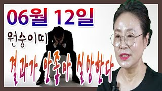 2020년 06월 12일 오늘의 운세 원숭이띠  결과가 따라주지 않아 실망하게 된다 수미산당 구슬보살  01…