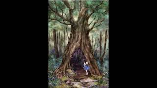 13 Matriarcas - Ancestra - Hélita Carolina