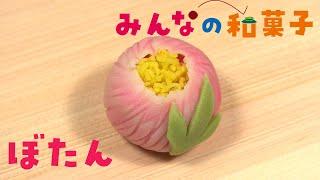 みんなの和菓子「牡丹(ぼたん)」 和菓子作りに挑戦できる手づくりキットとこのビデオで、あなたを和菓子に夢中にさせます!