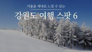 강원도 겨울 여행지 TOP6 ✨겨울왕국 뺨치는 강원도 …