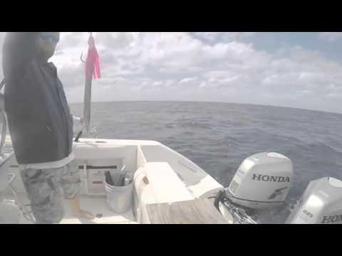 Cayman Sword fishing