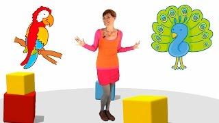 Мультики малышам - Весёлая Школа - птицы (развивающие мультфильмы и видео презентации)(Развивающее видео для детей