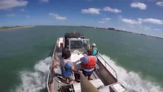 Selfie Stick Views from a Marine Biologist thumbnail