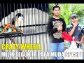 Roll Speed Rapet Cendet Crazy Wheell Milik Mr Teguh Jr Papa Muda Sf Cepu  Mp3 - Mp4 Download