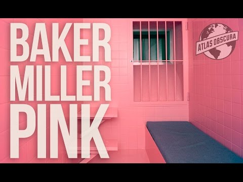 Baker Miller Pink   100 Wonders   Atlas Obscura
