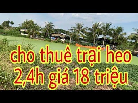 Cho thuê trang trại ở đồng Nai / DT 2,4ha có 4 trại heo và 4 ao cá cho thuê với giá triệu 1 tháng
