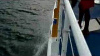 Fury Catamaran Sailing - Off the Island of Cozumel