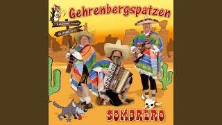 Stimmungs-Medley: Rosamunde / Anneliese / Schützenliesl / Herz-Schmerz-Polka / Humba Humba...