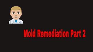 Inspection Plus - Mold Remediation Part 2