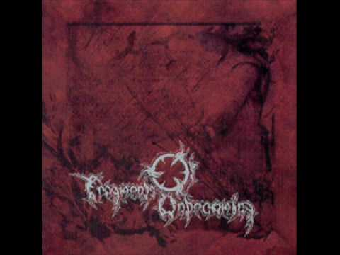Fragments of Unbecoming - Reborn