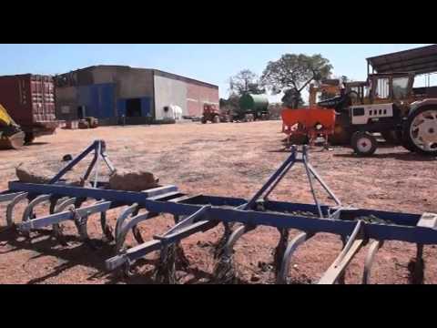 """Projeto agrícola português """"salva"""" com eletricidade arredores de Bissau"""
