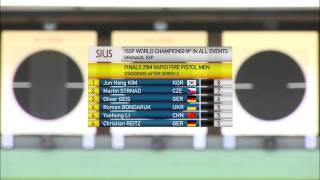 Чемпионат мира 2014, скоростная стрельба из малокалиберного пистолета, дистанция 25м, мужчины