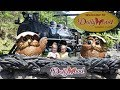 DOLLYWOOD KIDS rides playing and having a good time at Dolly Parton's amusement park with Harzel