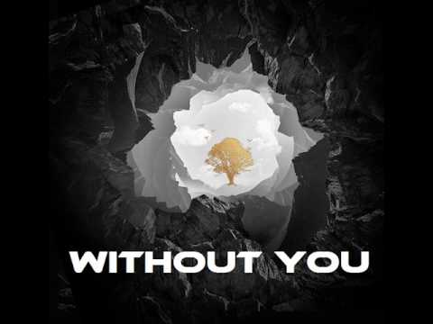 Avicii - Without You (Instrumental)