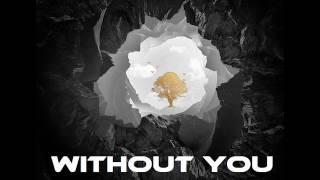 Avicii Without You Instrumental