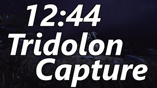 12:44 Tridolon Capture with Commentary (No Riven)