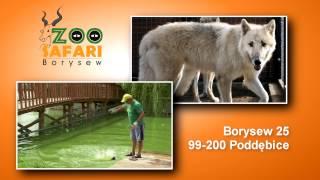 ZooSafari- bliżej natury