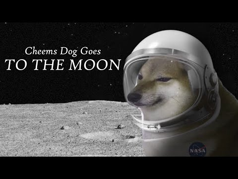 Cheems Dog Goes To The Moon