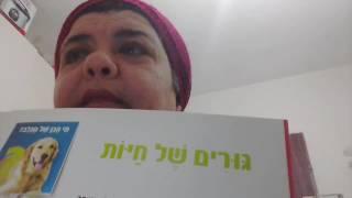 Урок иврита с Броней. ЖИВОТНЫЕ. ИХ названия дома и детеныши.