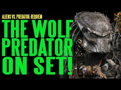 AVPR Wolf Predator On Set