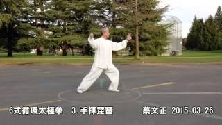 6式循環太極拳正向 (2015.03.26)