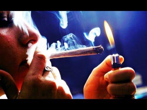 Effet Et Méfaits Du Cannabis Sur Notre Corps [Documentaire Scientifique]