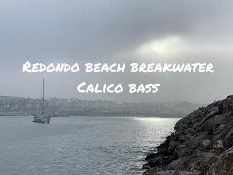 Ep 17 Back To Redondo Beach Jetty Wide Open Calico Bass Fishing