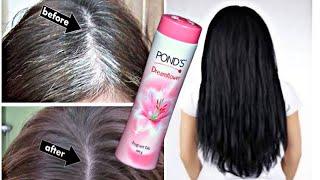 ये चीज सफ़ेद बालो में लगा कर तो देखो बाल दुगनी तेजी से काले होने लगेंगे Turn white hair to black hair