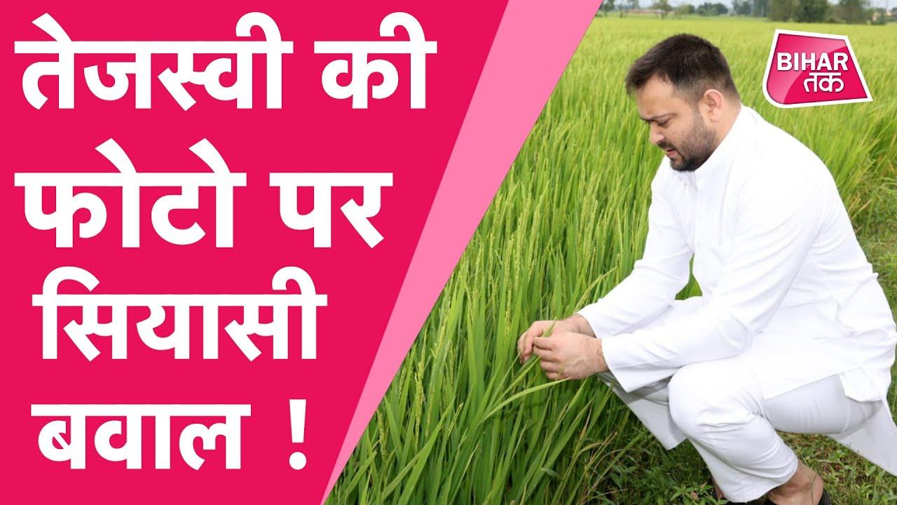 Tejashwi Yadav ने खेत में खिंचवाई तस्वीर, BJP ने कहा-किसानों का मजाक उड़ा रहे लालू के लाल  Bihar Tak