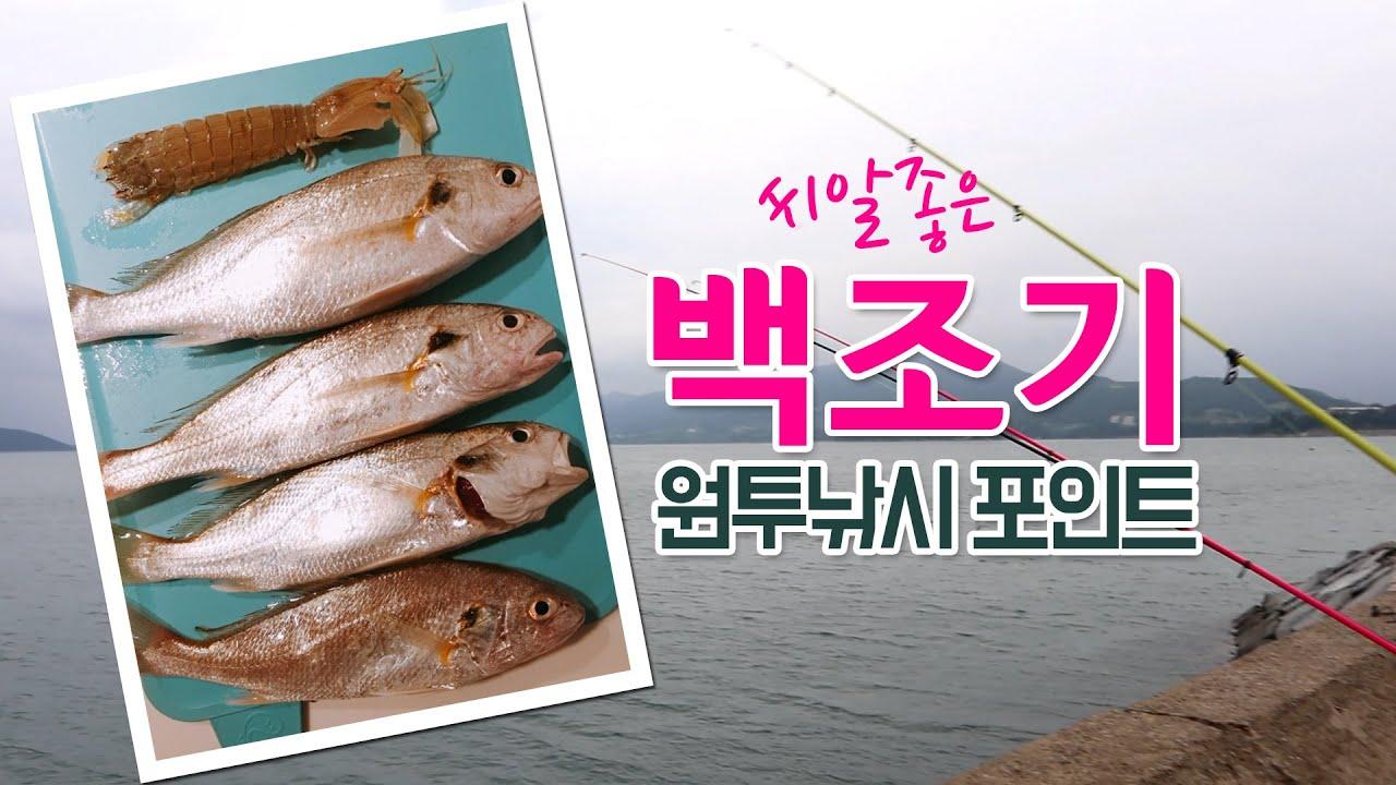 원투낚시 백조기 포인트! 여수/순천/광양/남해