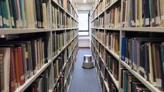 ГБОУ Школа № 1293 2 класс ''В''Кириенко Злата Библиотека проект