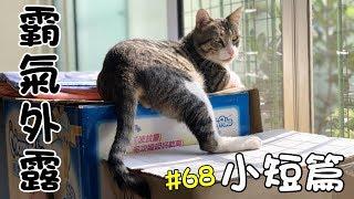 小短篇#68-MiMi醬的坐姿霸氣外露