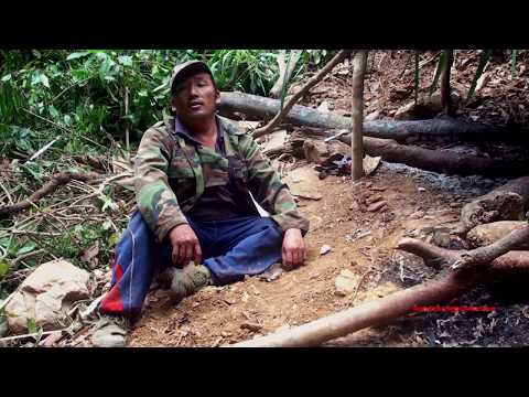 boar hunting in laos