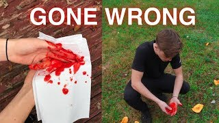 FRUIT NINJA IN REAL LIFE GONE WRONG!! (ALMOST CUT MY FINGER OFF)