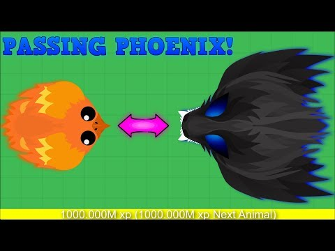 MOPE.IO PASSING PHOENIX!? BLACK PHOENIX AFTER PHOENIX? Mope.io Hack/Glitch [Mopeio]