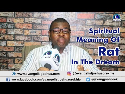 SPIRITUAL MEANING OF RAT DREAM - Evangelist Joshua TV