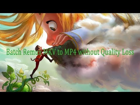 Batch Remux MKV to MP4 without Quality Loss-MultiMedia