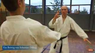 Karate - zwischen Kampfkunst und Kampfsport
