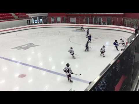 Central Ontario Wolves vs York Simcoe Express - February 5, 2017