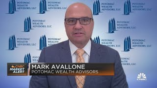 Potomac's Mark Avallone on rate fears and big tech