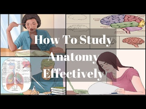 How To Study Anatomy Effectively | MBBS SERIES