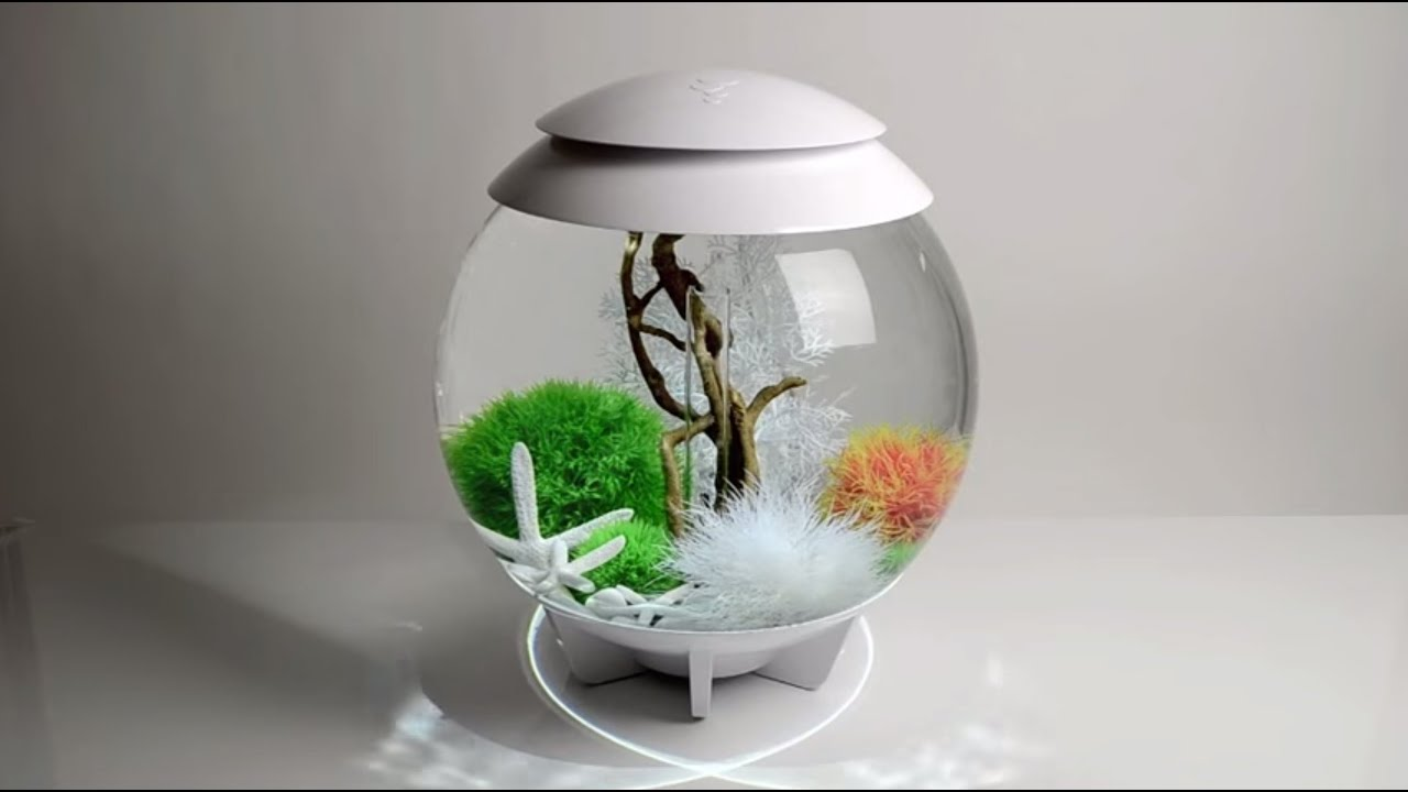 Biorb Halo 30w Aquarium Set Up Demonstration Youtube
