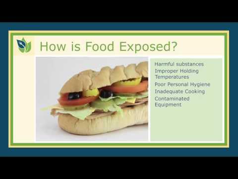 1. Food Safety Basics
